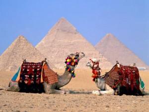 Когда дешевле покупать, бронировать тур в Египет?