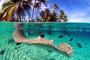 Отдых на Фиджи – рай или реальность?