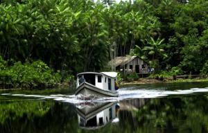 Река Амазонка и ее особенности
