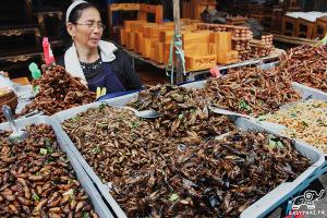 Поедание насекомых в Тайланде. Еда в Тайланде